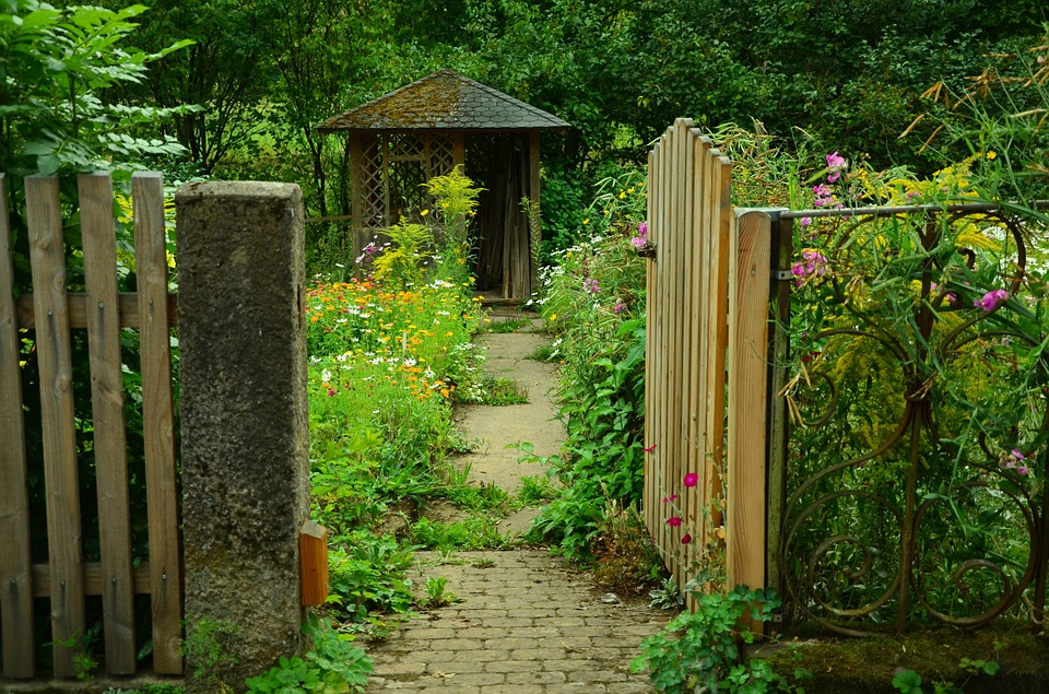 landscaping-around-your-shed