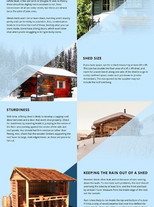 Shed Buying Guide [infographic]
